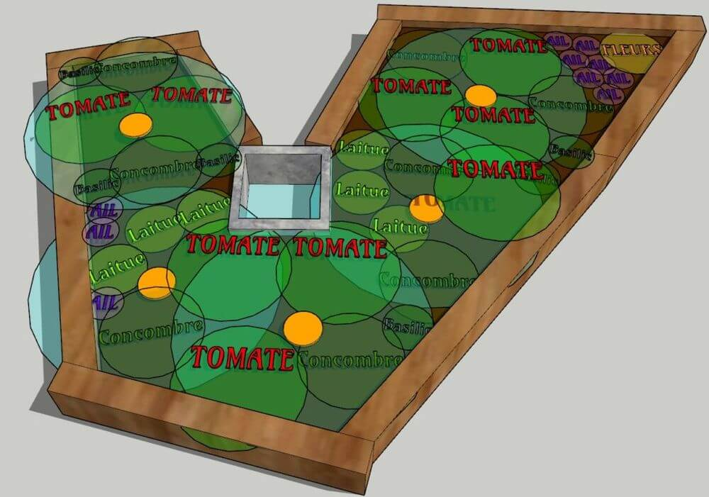 Plan aménagement potager